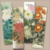 Chrysanthemum Painting Bookmarks (Set of 4)