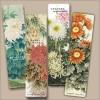 Chrysanthemum Painting Bookmarks (Set of 4)